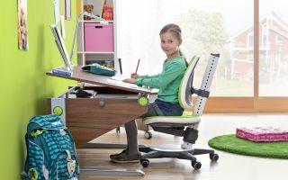 Выбор детского письменного стола