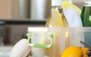 Использование экологически чистых средств для дома